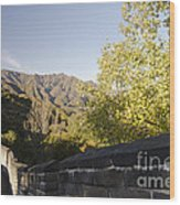 The Great Wall 1064 Wood Print