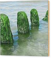 The Green Jetty Wood Print