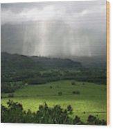 The Green Valley Surrounding Hanalei Wood Print