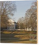 The Lawn University Of Virginia Wood Print