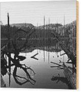 The Mirror Pool Wood Print