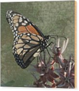 The Monarch Painterly Wood Print