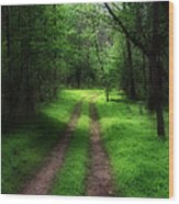 The Narrow Path Wood Print