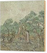 The Olive Orchard Wood Print