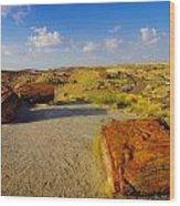 The Painted Desert Wood Print