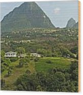 The Pitons In Saint Lucia Wood Print