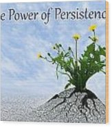 The Power Of Persistence Wood Print