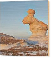 The Rabbit Stone Formation In White Desert Wood Print