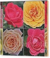 Spring Time Roses Wood Print