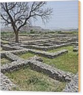 The Ruins Of Sirkap City At Taxila In Pakistan Wood Print