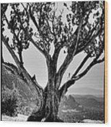 The Scene In Many John Wayne Westerns Wood Print