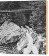 The Sinks Smoky Mountains Bw Wood Print
