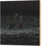 The Swan Of Tuonela Wood Print