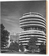 The Watergate Hotel - Washington D C Wood Print