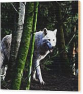 The White Wolf Wood Print