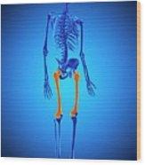 Thigh Bones Wood Print