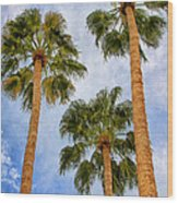 Three Palms Palm Springs Wood Print