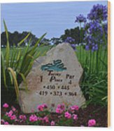 Torrey Pines South Wood Print
