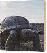 Tortoise Wood Print