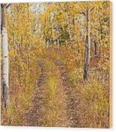 Trail In Golden Aspen Forest Wood Print