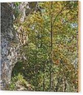 Trails Wood Print
