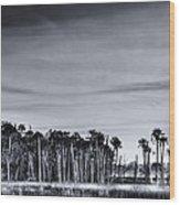 Tranquil Hammock Wood Print