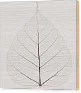 Transparent Leaf Wood Print by Kelly Redinger
