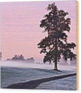 Tree At Dawn / Maynooth Wood Print