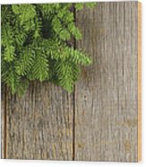 Tree Branch On Rustic Wooden Background Used For Christmas Decor Wood Print