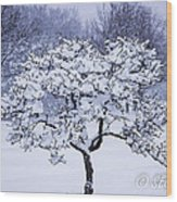 Tree Frosting Wood Print