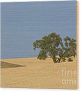 Tree In Field Wood Print