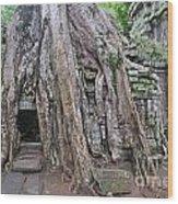 Tree Roots On Ruins At Angkor Wat Wood Print by Sami Sarkis