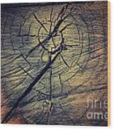 Tree Texture Background Wood Print