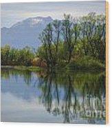 Trees And Lake Wood Print