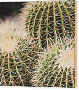 Triple Cactus Wood Print