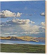 Tsomoriri Lake Leh India Wood Print