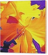Tulip 6 Wood Print