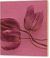 Tulip Lover Wood Print