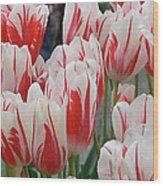 Tulips 8 Wood Print