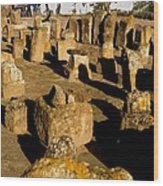 Tunisia. Carthage. Tablets In Tophet - Wood Print