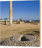 Tunisia. Carthage. The Baths Wood Print