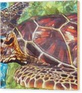 Turtle 1 Wood Print