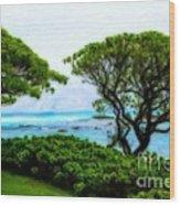 Turtle Bay View Wood Print