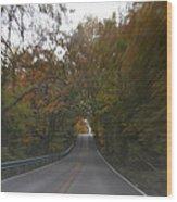 Twice The Speed Of Autumn Wood Print