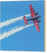 Twin Engine Plane  Wood Print