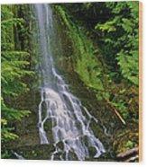 Twin Falls Creek Mount Rainier Wood Print