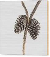 Two Pine Cones One Twig Wood Print