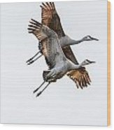 Two Sandhill Cranes Wood Print