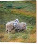 Two Sheep Wood Print