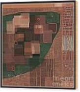 Untitled 368 Wood Print